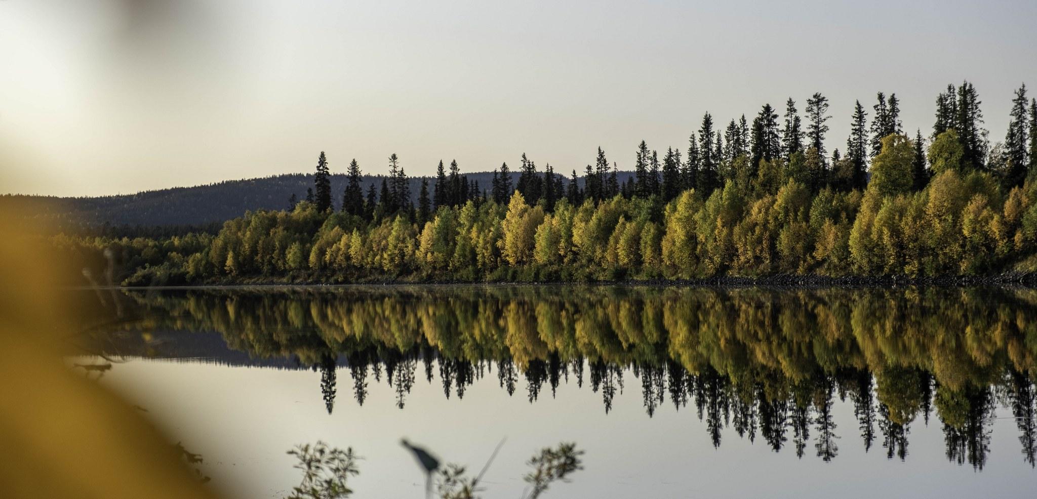 autumn-colours--ivalo-lapland-ism-irina-salomaa-9